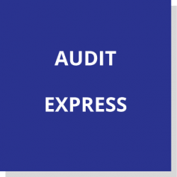 Auditexpress2
